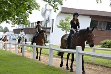 Centre equestre de Poitiers