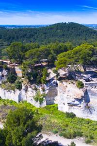 """Visites Guidées """"L'Abbaye de Saint-Roman"""""""