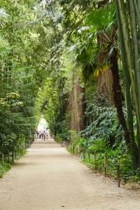 """16 ème Edition """"Rendez-vous aux jardins"""" à La Bambouseraie"""