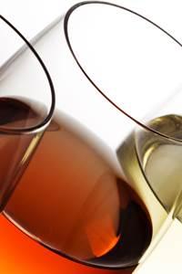 Balade vigne et vin à St Gély