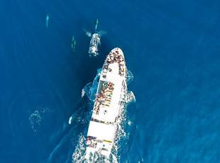 Compagnie Maritime CTM