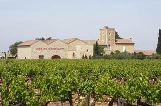Château d'Aiguilhon-Domaine Viticole