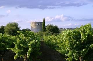 IGP Coteaux du Pont du Gard