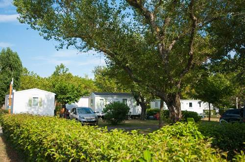 Camping Lou Vincen ©