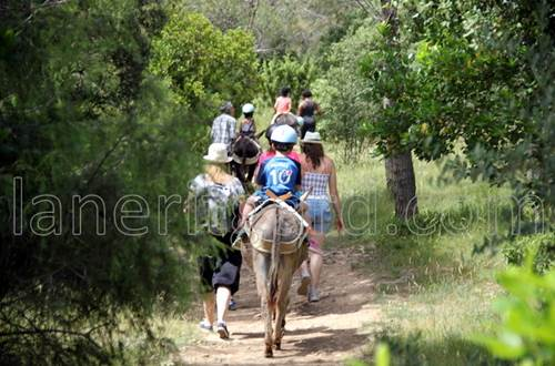 Randonnée entre amis - Occitanie © laneritgard.com