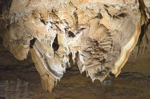 Le Grand Papillon - Grotte de Trabuc ©
